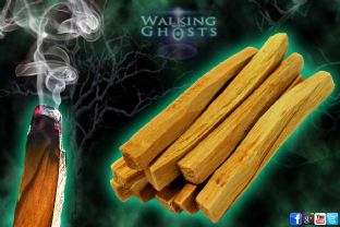 Palo Santo Holy Wood Sacred Tree Incense Rituals Meditation Smudge
